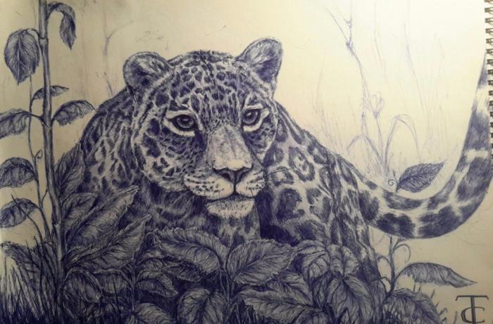 #bluepen #feline #grass #mywork #ручка #гепард #мояработа #cheetahinthegrass #lurkingcheetah #работаручкой #cheetah #penart #art #cat #кошки  | Author: TSir