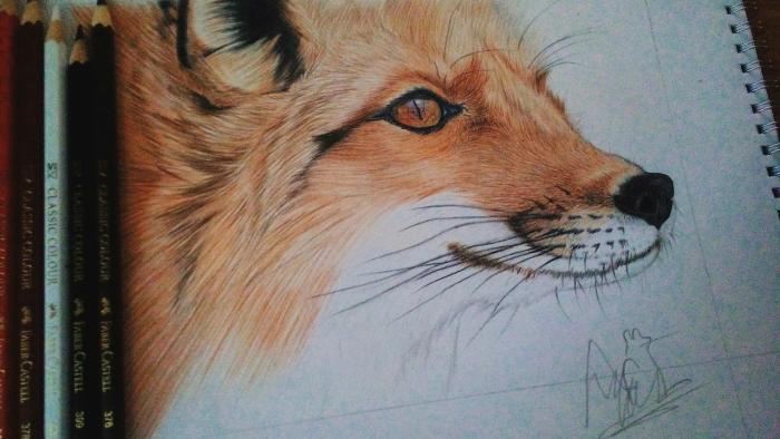 Мой рисунок обычными цветными карандашами  | Author: Кислотный Кот