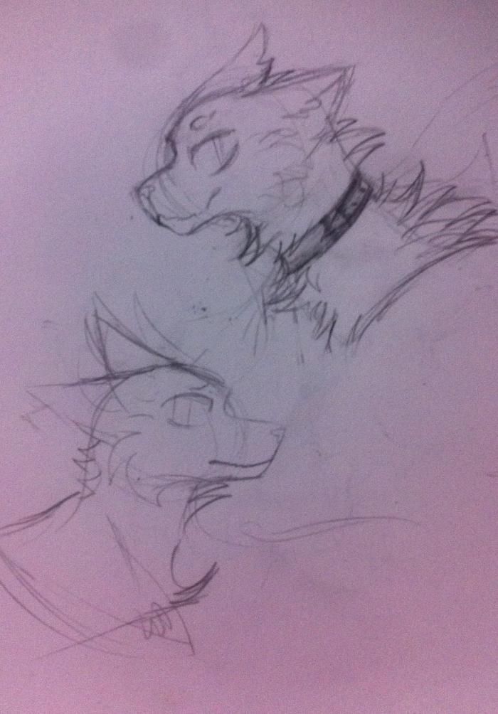 Смотрите, я пытаюсь в волчиков. Но что-то как-то всё плохо. #Wolf #oc  #sketch   | Author: TheLastNight