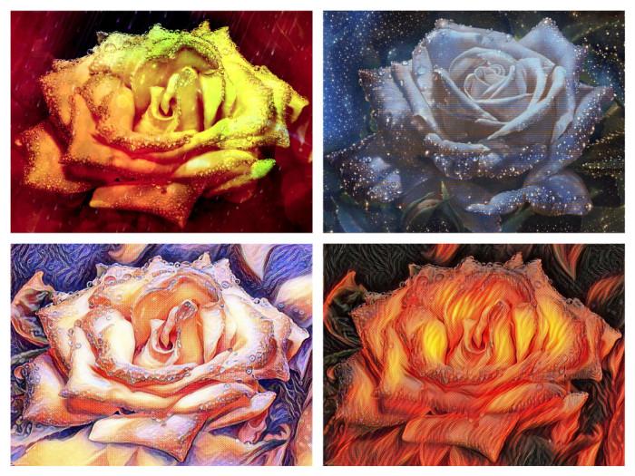 Коллаж. Розы как настроение. | Author: Mlada