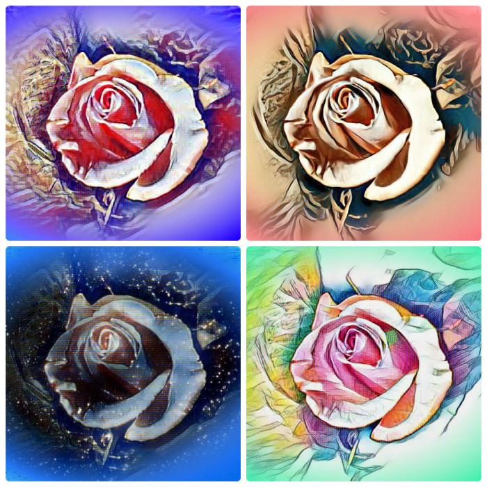 Розы как настроение  2 | Author: Mlada