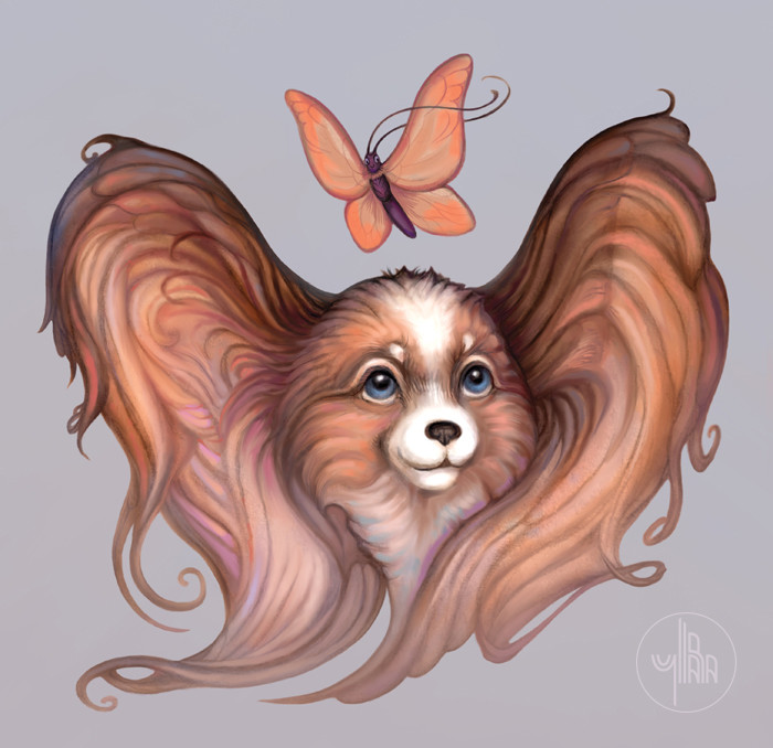 "Папильон, континентальный той-спаниель. ""Papillon"" - это ""бабочка"" по-французски:)  https://printio.ru/sweatshirts/6531 https://www.etsy.com/listing/585398276/greeting-card-design-with-cute-dog-and?ref=pr_shop #собака #бабочка #etsy | Author: Yullapa"
