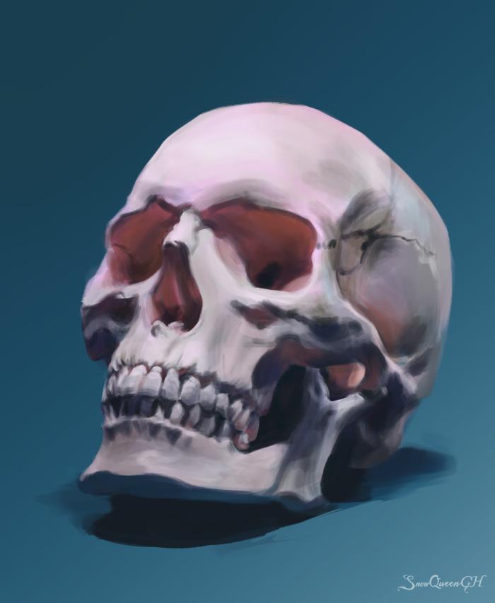 [ стадик черепа, скорее живописный, чем анатомический ]  ~~~~~~~~~~~~~~~~~~~~~~~~~~~~  #sketch #скетч #череп #стадик  | Author: SnowQueenGH