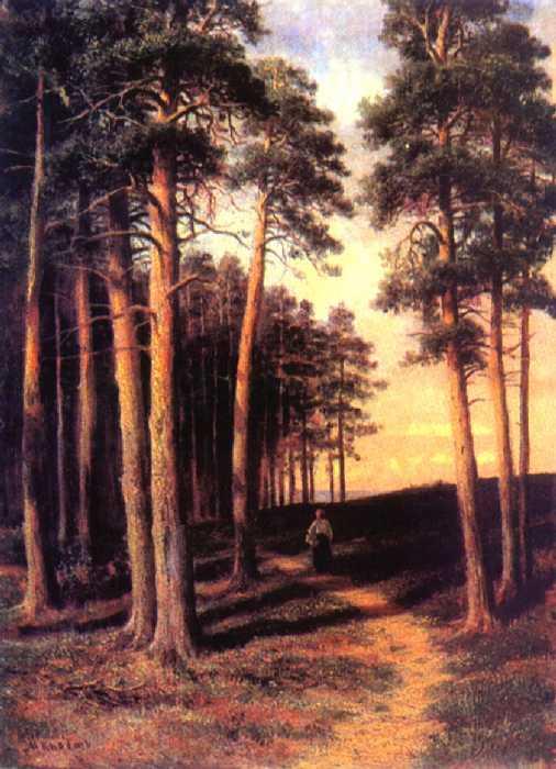 Сосновый лес — Клодт Михаил Константинович