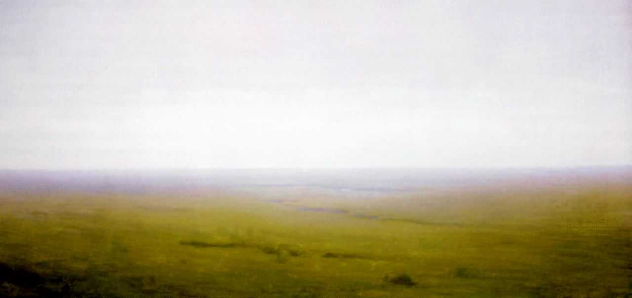Пейзаж. Степь — Куинджи Архип Иванович