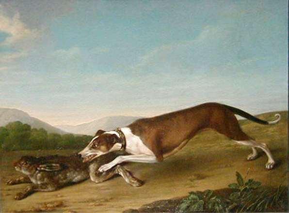 Собака и заяц — Гроот Георг Кристофор