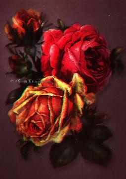 Царица цветов  #rose #flower