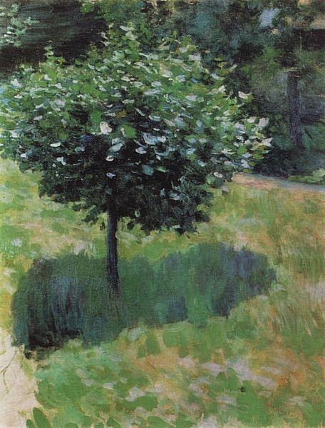 Дерево — Борисов-Мусатов Виктор Эльпидифорович
